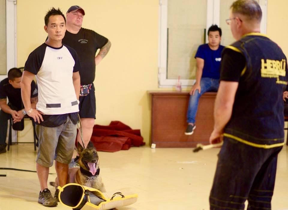 Hình ảnh chó Begcie Bỉ trong quá trình đào tạo huấn luyện